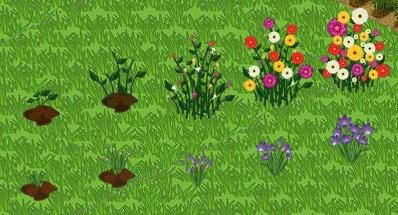 FlowerGrowth