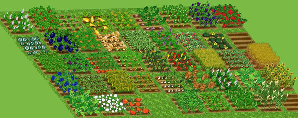 CropsRotated