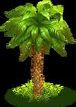 Palm green 2