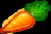 FOOD CARROTS