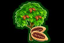 SHOP CACAO TREE