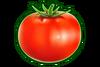 FOOD TOMATO
