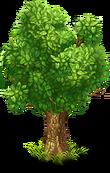 Tree green 2
