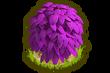 SHOP FLOWERBED 9