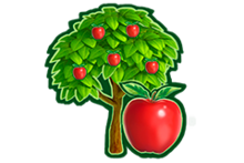 SHOP APPLE TREE