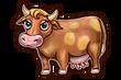 SHOP COW