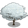 Dogwood Tree (decoration)-icon