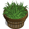 Lemongrass Bushel-icon