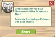 White Sabertooth Tiger Extra Large Snow Treasure