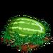 Super Watermelon extra100