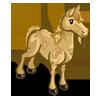 Desert Horse-icon