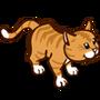 Orange Tabby-icon