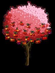 Rainier Cherry2-icon