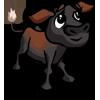 Australian Friesian Shaiwal Calf-icon
