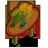 Beech Bonsai Tree Mastery Sign-icon