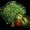 Chestnut Tree-icon
