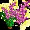 Full Bloom Fairy Flower-icon