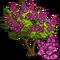 Queen's Crape Tree-icon