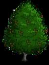 Red Alder2-icon