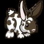 Rex Rabbit-icon