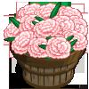Snow Carnation Bushel-icon