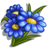 Blue Daisy-icon