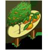 Mandarin Tree Mastery Sign-icon