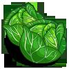 Plik:Cabbage-icon.png