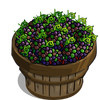 Jungle Blackberry Bushel-icon