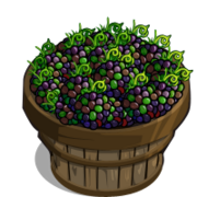 Jungle Blackberry Bushel-icon