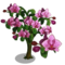 Moth Orchid Tree-icon