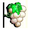 Pearlcurrant-icon