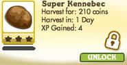 Super Kennebec Locked