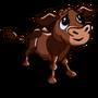 Chocolate Calf-icon