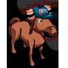 HorseSpectator