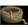 Lanyard-icon