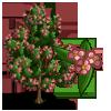 Mountain Silverbell Tree-icon