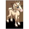 Palomino Quarter Foal-icon