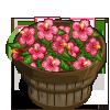 Pink Hibiscus Bushel-icon
