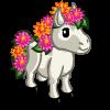 Spring Mini Horse-icon