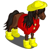 Raingear Horse-icon