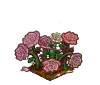 Wither Bunch Pink Roses-icon