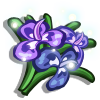 Auroral Rosemary-icon