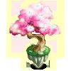 Flowering Magic Tree-icon