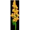 Yellow Pompons-icon