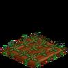Artichokes-33