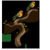 European Robins-icon