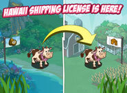 Hawaiian Paradise Shipping License Loading Screen