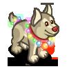 Tangled Lights Husky-icon
