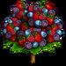 Organic Berries Tree-icon